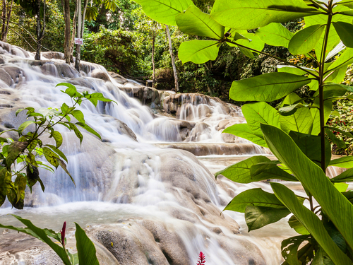 Ocho Rios Jamaica Dunns Falls Tubing Tours Reviews