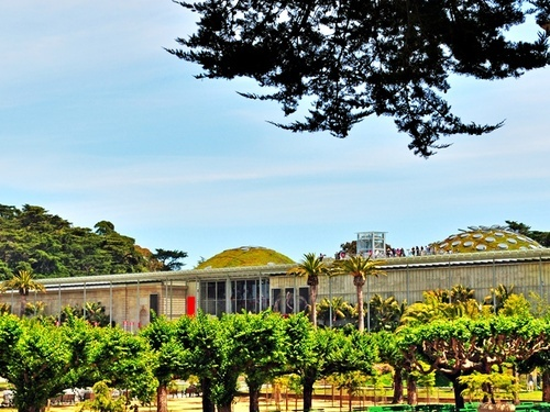 San Francisco sightsee Excursion Reviews