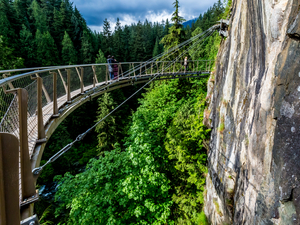 Vancouver City Sightseeing and Capilano Suspension Bridge Excursion