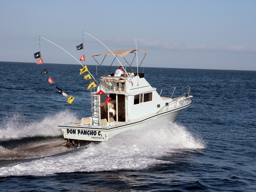 Cabo San Lucas trolling style fishing Booking