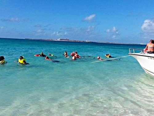 Grand Turk Turks and Caicos wall snorkeling Trip Reviews