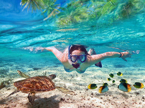 Roatan  Honduras french cay Excursion Reservations