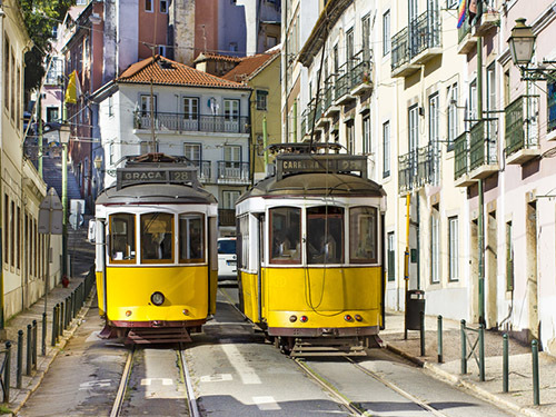 Lisbon Figueira  Excursion Cost