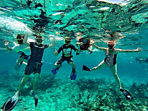 Grand Turk Turks and Caicos wall snorkeling Tour Reservations